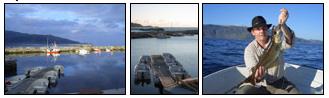 eine top Bootsflotte