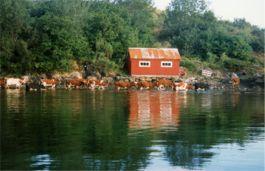 typisch norwegisch