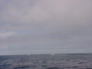 Fischen auf offener See in Norwegen