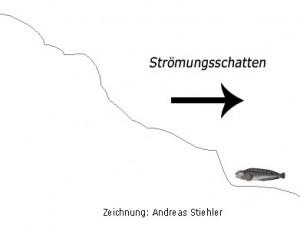 Fischen im Strömungsschatten