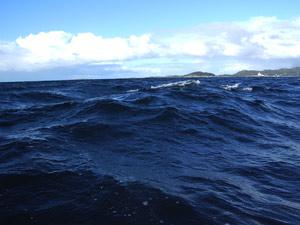 Wellen Nordmeer Norwegen