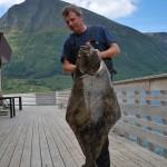 Heilbutt aus Norwegen: so macht Angeln in Norwegen Spaß