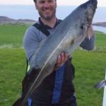 strammer Seelachs aus dem Nordmeer