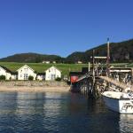 drei Ferienhäuser mit Fjordblick in Mittelnorwegen nahe Trondheim