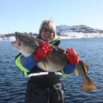 auch Frauen können angeln: ein super Skrei