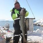 so macht Angeln in Norwegen Spaß: ein dicker Dorsch