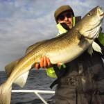 glückliche Angler mit dickem Skrei beim Winterangeln