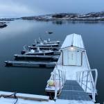 die Angelboote warten auf ihren Einsatz