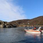 mit 50 PS zu den Fischgründen im Skjorafjord