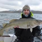 Burøysund da werden nicht nur Heilbutte gefangen