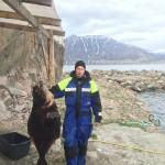 Joakim Larsson mit 38 kg Heilbutt beim Wiegen
