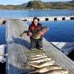 schöne Dorsche aus Roan Sjøfiske