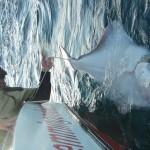 147cm Heilbutt wird nach dem Vermessen wieder dem Nordmeer übergeben