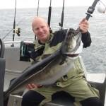 14,5kg Seelachs aus Hemmingodden