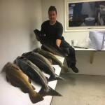 tolle Fische in Sørvika