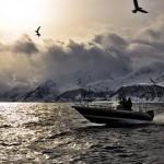 Auf zum Fisch Loppa Havfiske
