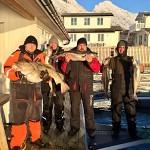 glückliche Angler in Nordskot mit Dorschen und Seelachsen