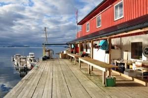 Angelreise auf die Lofoten - Lofotbrygga lockt mit 50% Knallerangebot