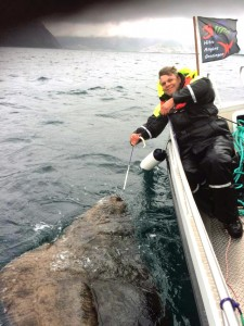 220cm Heilbutt in Nordskot - nach dem Foto durfte er wieder schwimmen