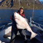schöner Loppa Havfiske-Heilbutt