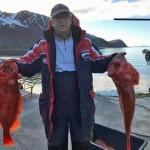 rote Riesen aus Loppa