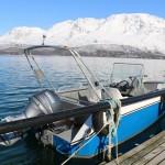 gutes Angelboot mit 19 Fuß
