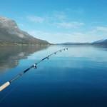 Angeln im geschützten Fjord