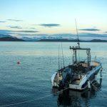 Grytoy-Havfiske-Boot-22-Fuss