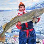 toller Dorsch Rotsund Seafishing